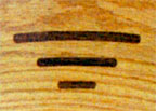 Amish Shaker Chair - Inlay Detail